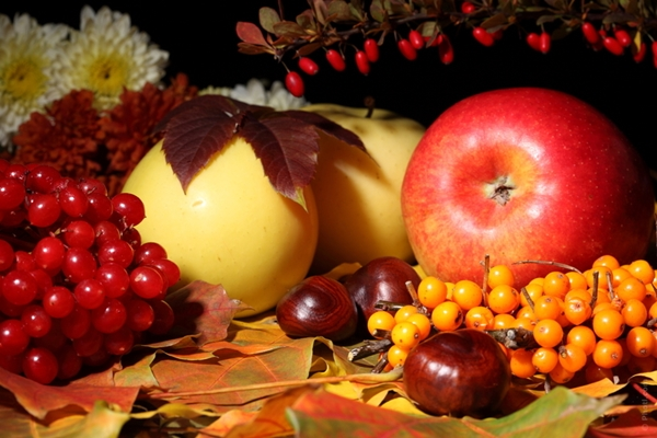 """Képtalálat a következőre: """"őszi gyümölcsök kép"""""""