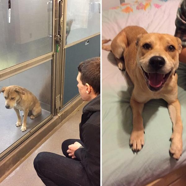 Boldogság előtt és után
