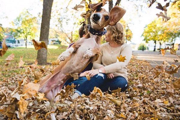 Tudod, miért boldogabbak a kutyák, mint te?