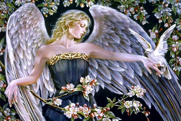 Fogadd el az angyalok 5 ajándékát Nőnap alkalmából!