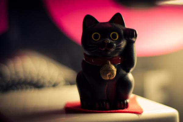 Ismerd meg a legendás szerencse cica történetét!