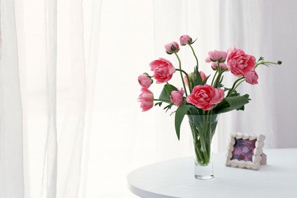 Mondunk 5 tippet, hogy a vágott virág tovább pompázzon az otthonodban