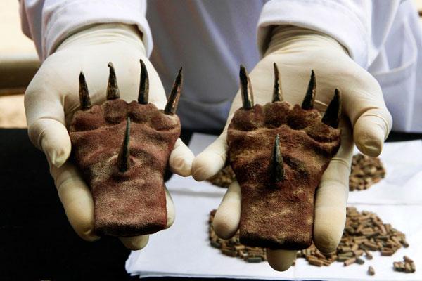Ma is fejtörést okoz a tudósoknak ez a 10 régészeti felfedezés