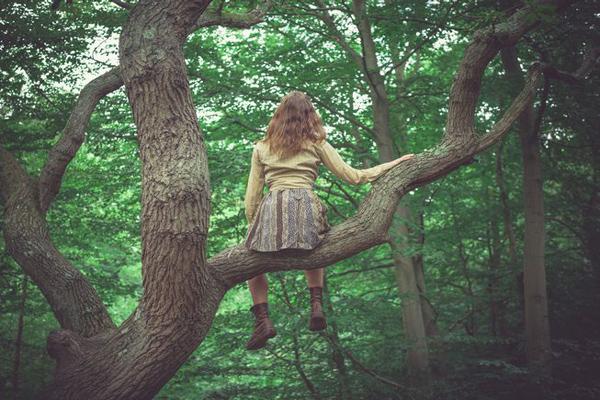 Van itt számodra 5 csodálatos lecke a fáktól