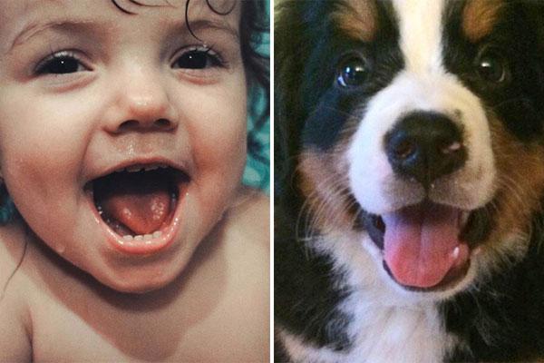 Borzasztó cuki gyermeki és állati érzelmek