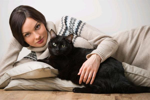 Szeretet cica módra