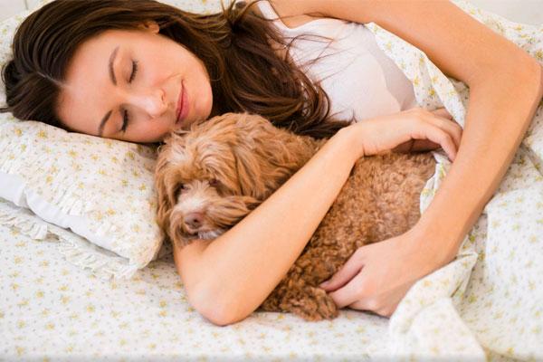 Íme, a 7 előnye annak, ha a kutyáddal alszol