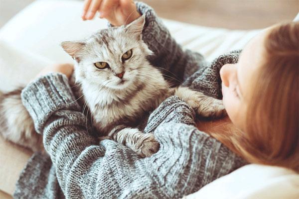 9 hang, amit a cicád kiadhat