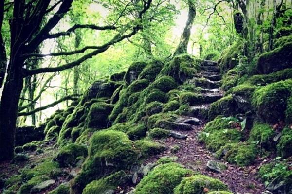 Bejárat a valóságból a misztikus világba