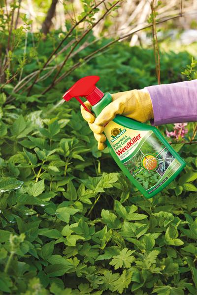 Így tartsd rendben a virágos kertedet